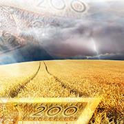 T2021_kolko_biznes